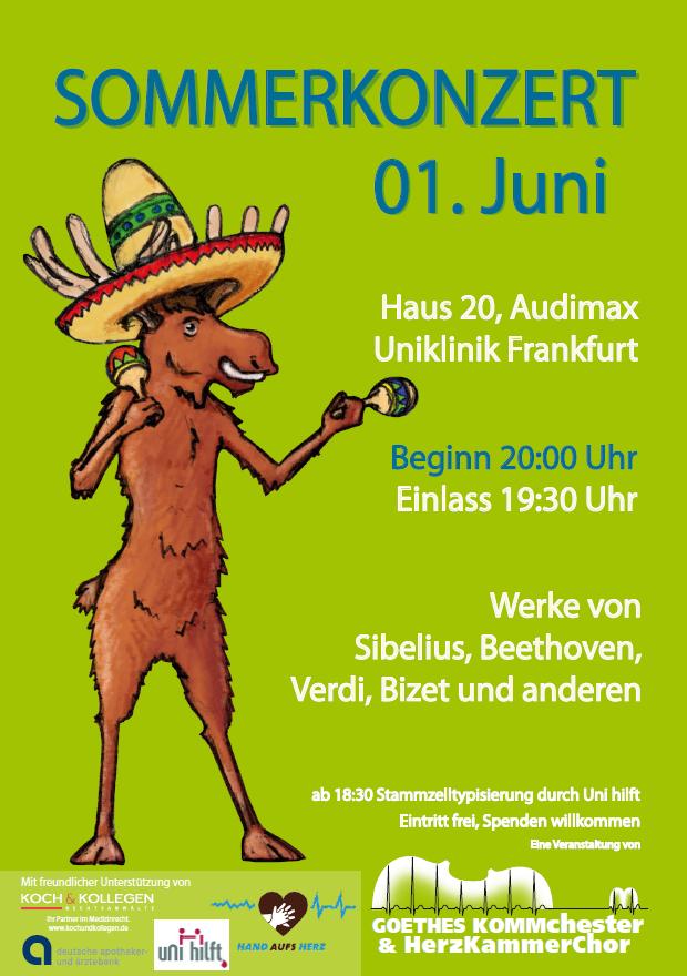 Sommerkonzert_17